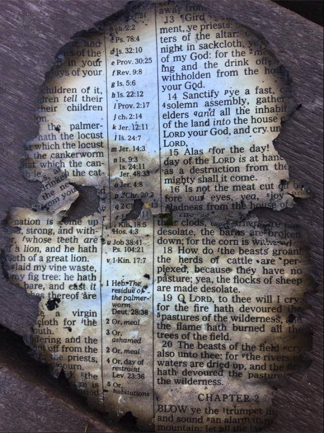 burned-bible-page_326913