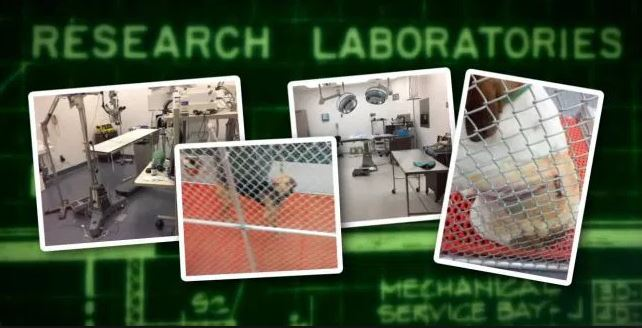 research lab_501612
