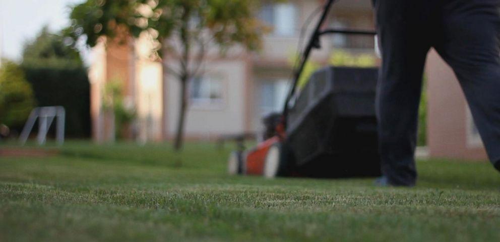lawn care_1522768479355.jpg.jpg