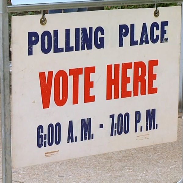 primary election 2_1528154061442.jpg.jpg