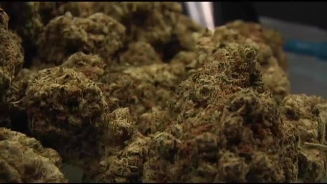 Hayward_Cannabis_0_47208378_ver1.0_640_360_1538832086072.jpg