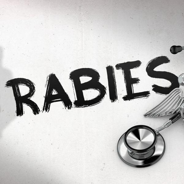 rabies_1546871434930.JPG