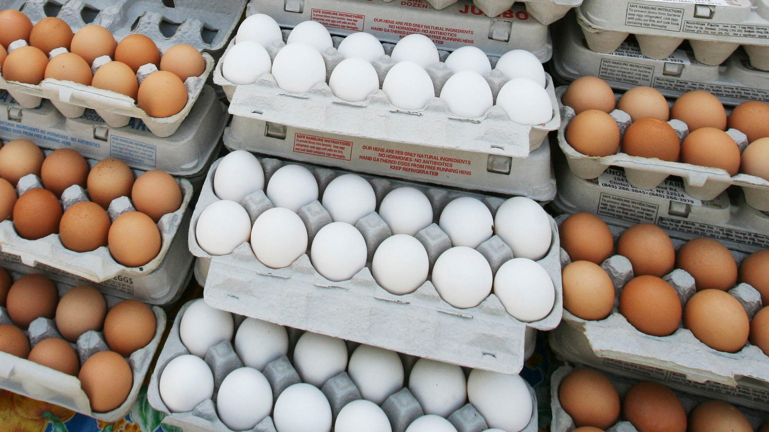 Eggs_Health_68117-159532.jpg42749745