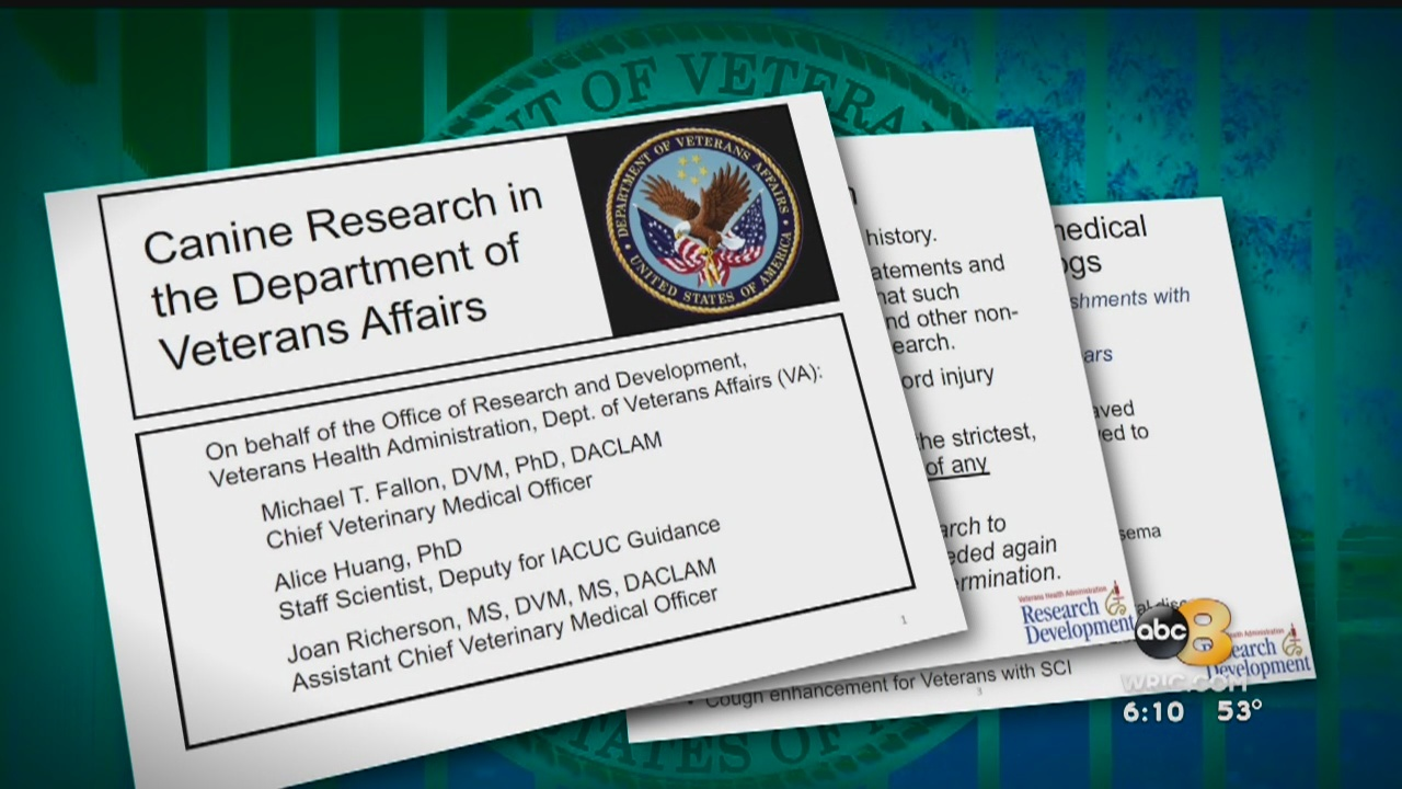 """In a Department of Veterans Affairs powerpoint presentation shared with 8News, the VA says """"it might be possible to transition from dogs to pigs,"""" in regards to dog tests in Richmond. The presentation also states the VA is committing more than $2 mil"""