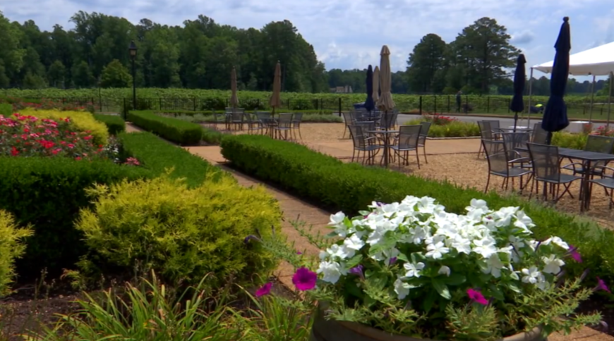 Sip, relax and enjoy Virginia wine at New Kent Winery