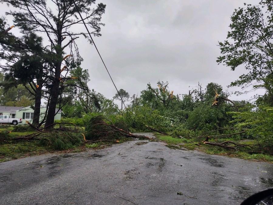 Fallen trees in Lancaster County, Va.