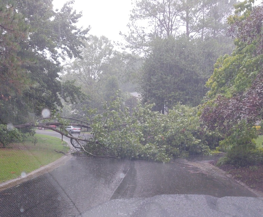A downed tree blocks the roadway Saturday morning in Brandermill