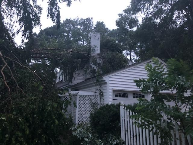 Tree on home in White Stone, Virginia