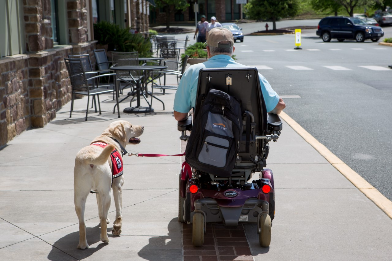 Photo provided by Service Dogs of Virginia