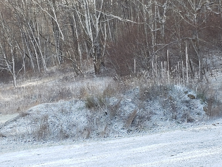 The first snow of the season in Hightown, Virginia, on Tuesday, Nov. 17, 2020. (Photo submitted by Alice Metts)