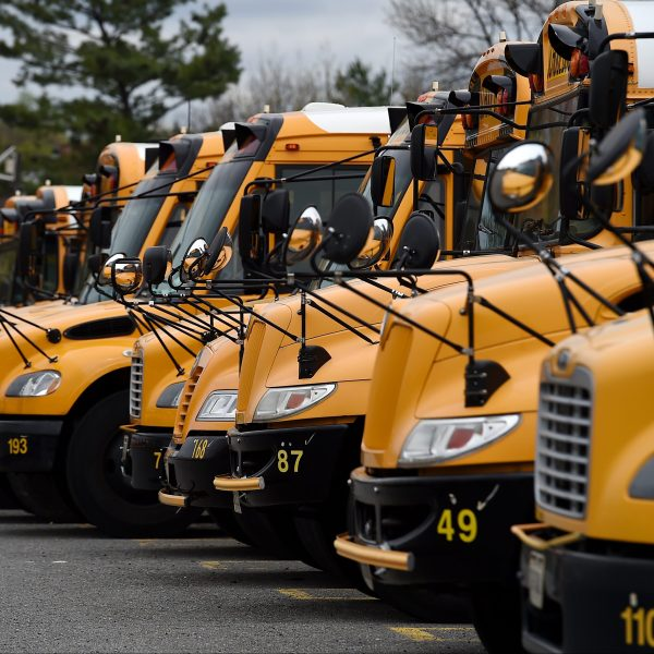 School buses (Getty images)