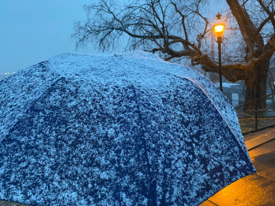 Snow in Richmond