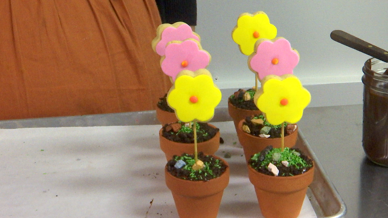 spring cookie flower pots
