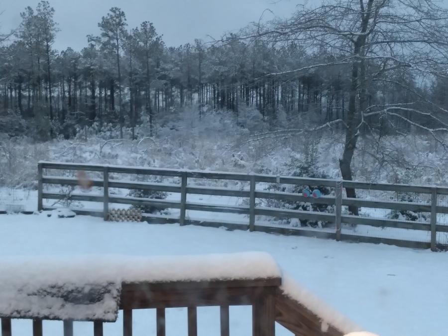King William County snow