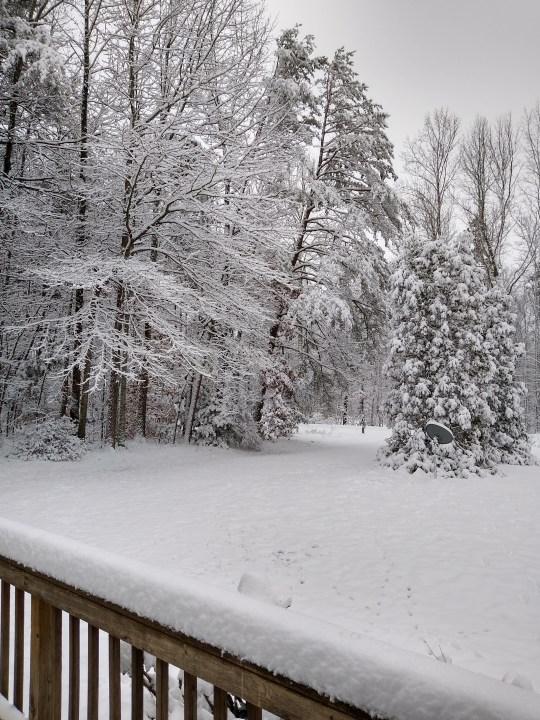 Montross snow photos