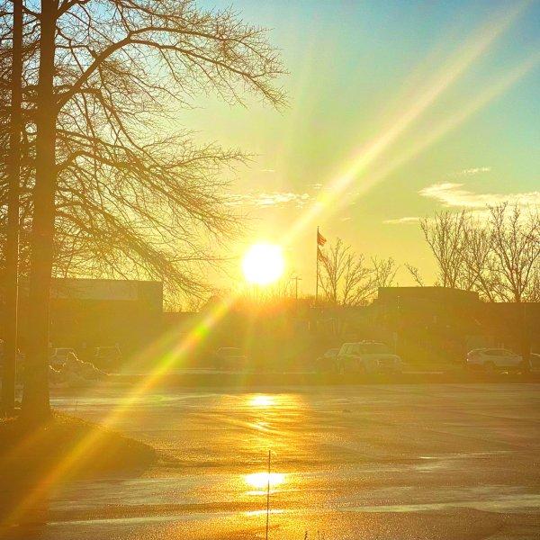 sunshine by tyler