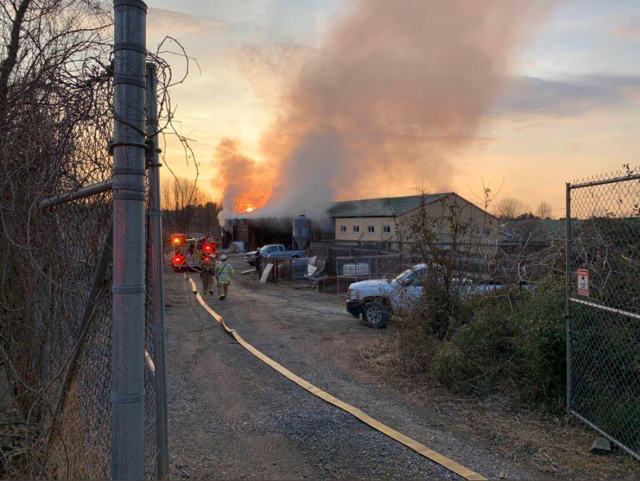 zoo fire, fairfax county fire-rescue giraffes