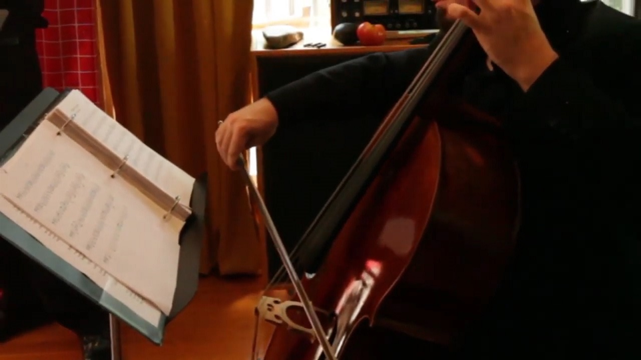 cello stolen from Richmond musician