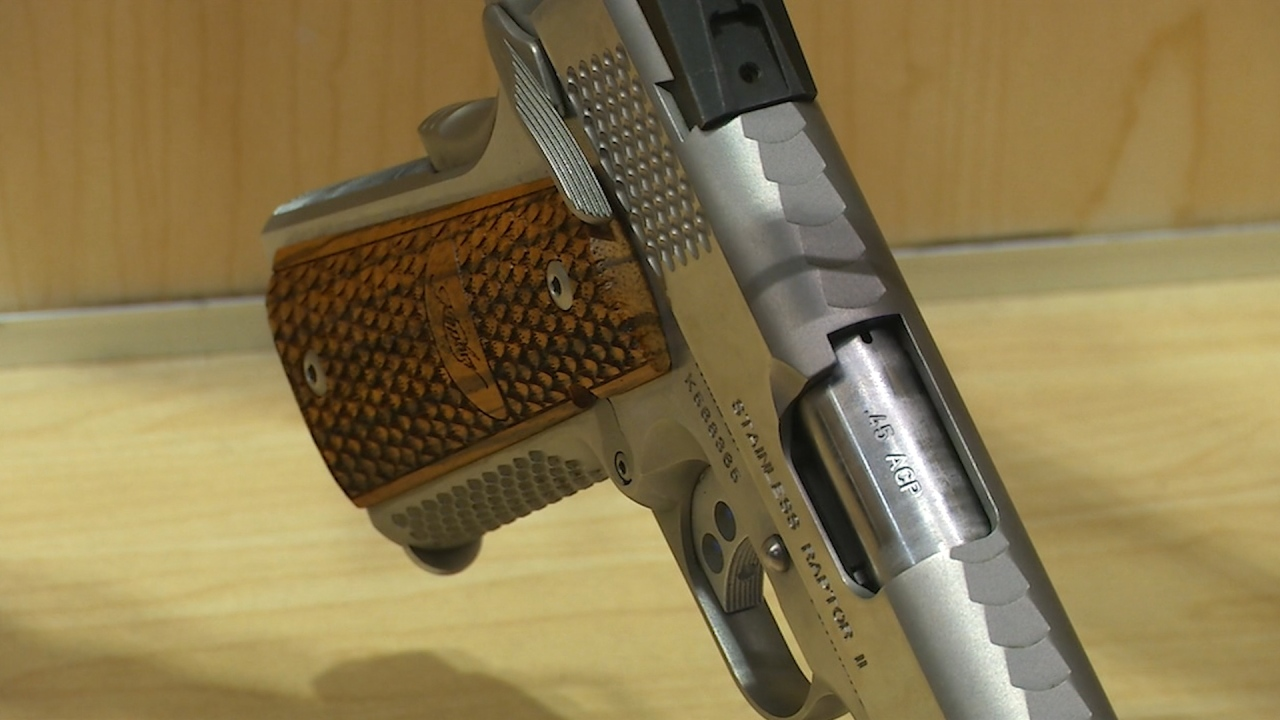 VA Senators Kaine and Warner reintroduce legislation to reduce gun violence