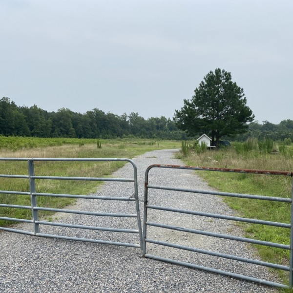 Newbys Bridge Road dredging site